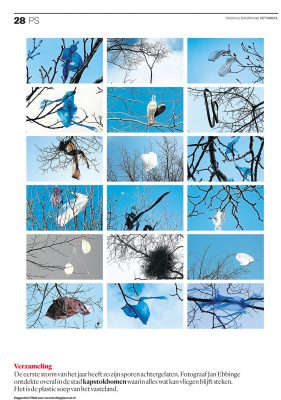 Bomen als kapstok in Het Parool